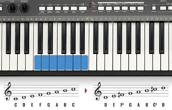 The transpose function makes sure you're always singing in the right key!